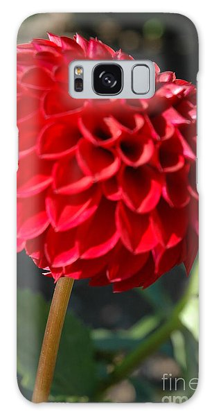 Dahlia IIi Galaxy Case by Christiane Hellner-OBrien