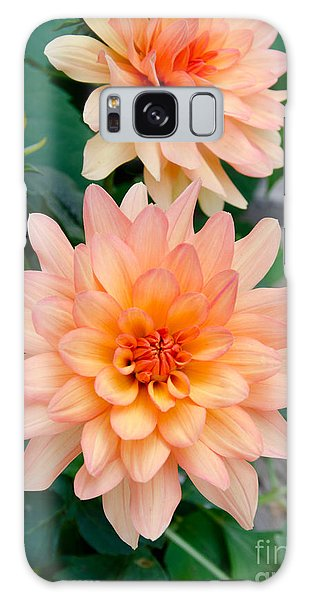 Dahlias Galaxy Case