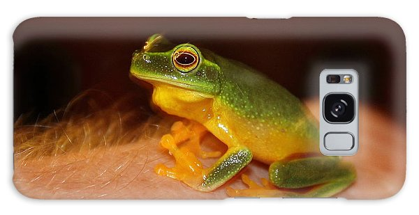 Dainty Tree Frog  Galaxy Case