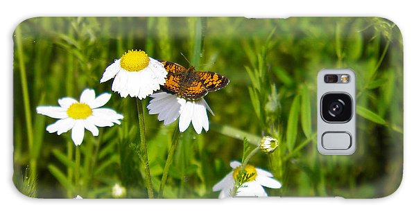 Daisey And Butterfly Galaxy Case by Nick Kirby