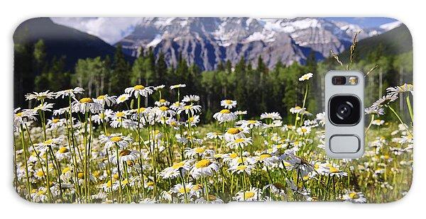 Wilderness Galaxy Case - Daisies At Mount Robson by Elena Elisseeva