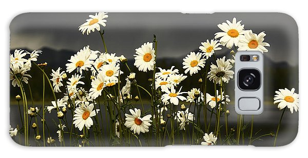 Daisies In Storm Light Galaxy Case