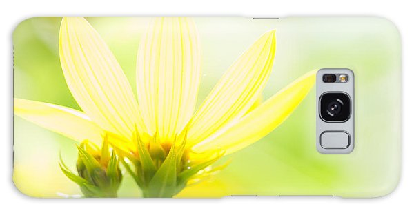Daisies In The Sun Galaxy Case