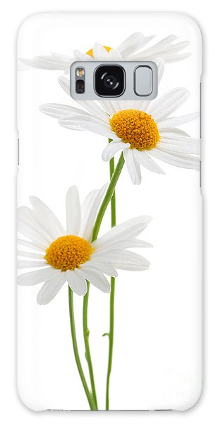 Daisies On White Background Galaxy Case