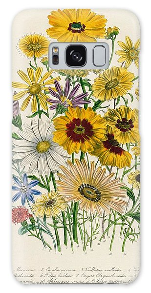 Decorative Galaxy Case - Daisies by Jane Loudon
