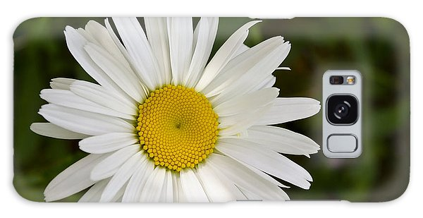 Daisy Day Galaxy Case