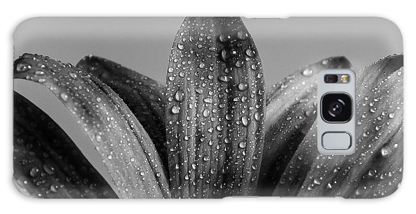 Daisy Dew B/w Galaxy Case