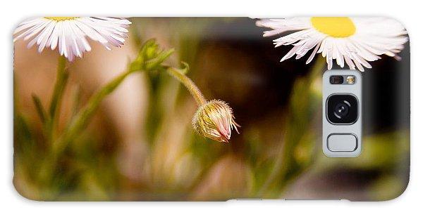 Daisy In A Field Galaxy Case