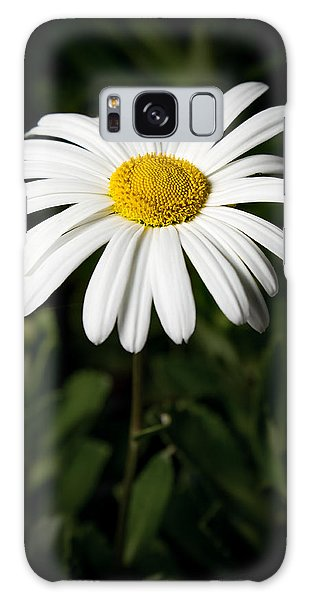 Daisy In The Garden Galaxy Case