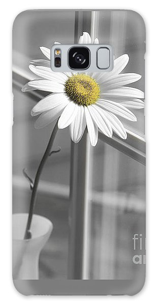 Daisy In The Window Galaxy Case