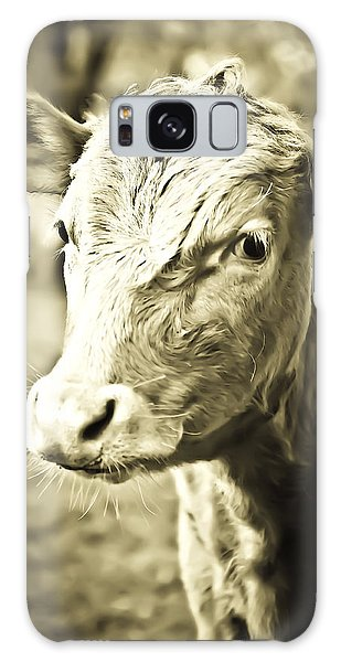 Galaxy Case featuring the photograph Daisy by Sherri Meyer