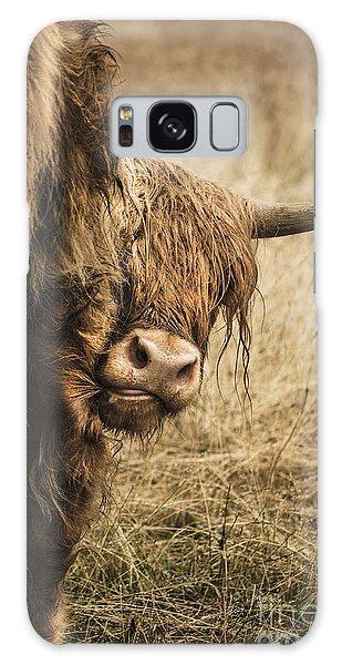 Highland Cow Damn Fleas Galaxy Case