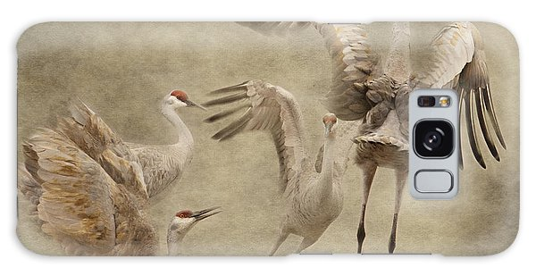 Dance Of The Sandhill Crane Galaxy Case
