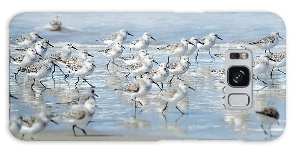 Dance Of The Sandpipers Galaxy Case