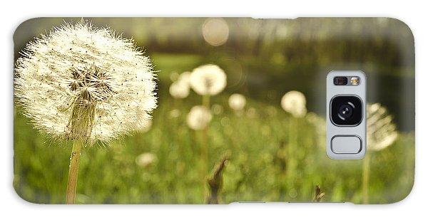 Dandelion Basking In The Sun Galaxy Case