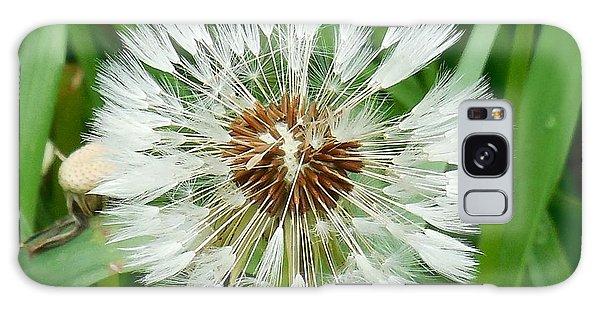 Dandelion Fluff Galaxy Case by Karen Molenaar Terrell
