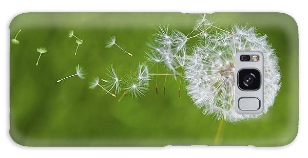 Dandelion In The Wind Galaxy Case
