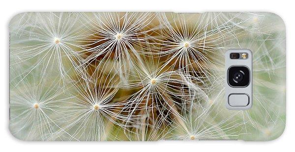 Dandelion Matrix Galaxy Case