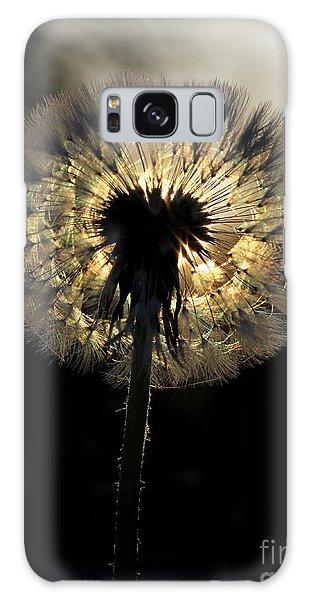 Dandelion Sunrise - 1 Galaxy Case