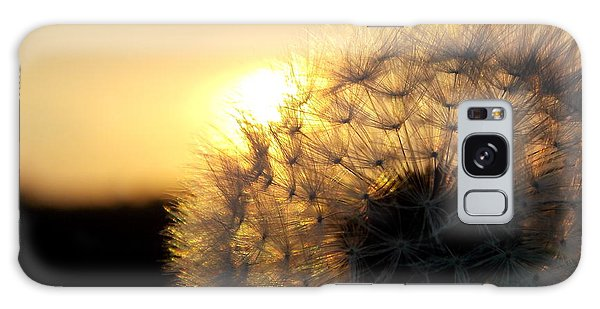 Dandelion Sunset Galaxy Case