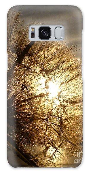 Dandelion Sunset Galaxy Case