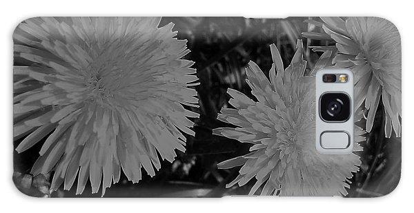 Dandelion Weeds? B/w Galaxy Case by Martin Howard