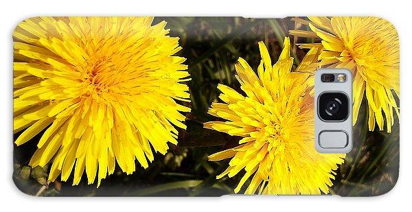 Dandelion Weeds? Galaxy Case by Martin Howard