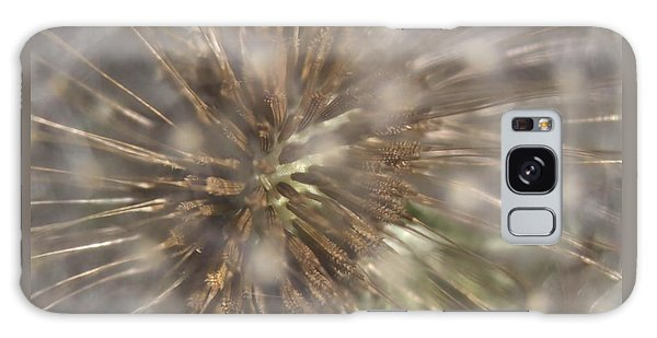 Dandillion Seed Head Galaxy Case