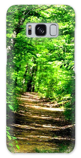 Dappled Sunlit Path In The Forest Galaxy Case