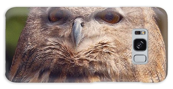 Dare I Say Owls Are A Hoot? Galaxy Case