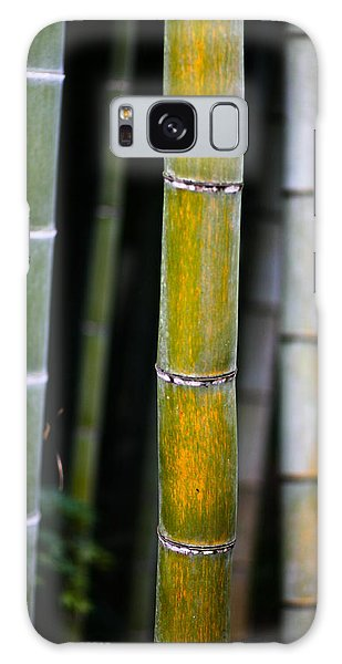 Galaxy Case featuring the photograph Dark Bamboo by Brad Brizek