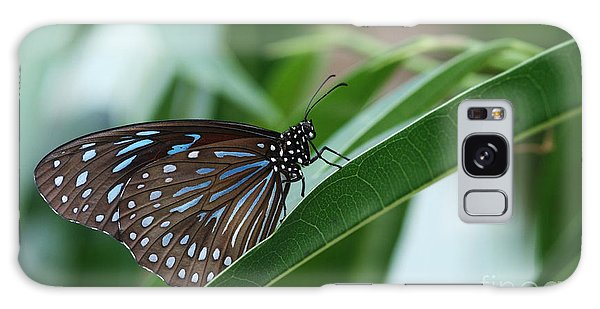 Dark Blue Tiger Butterfly #2 Galaxy Case by Judy Whitton