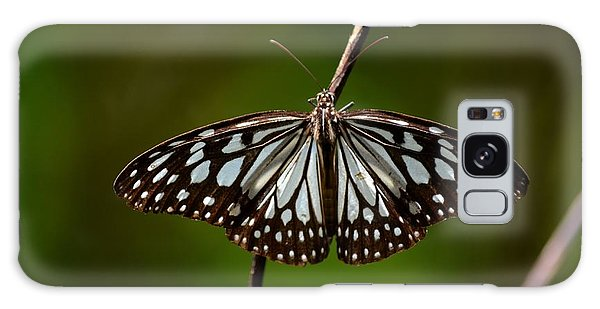 Dark Glassy Tiger Butterfly On Branch Galaxy Case