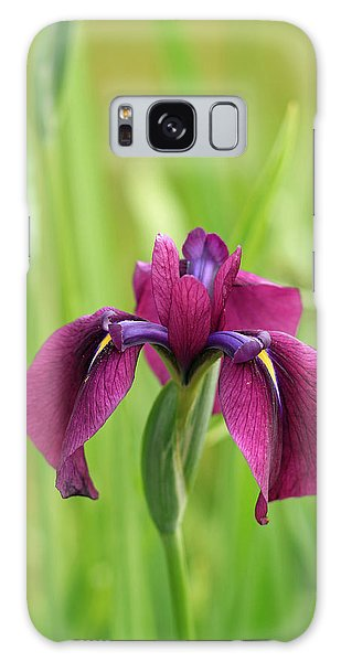 Dark Magenta Iris Galaxy Case