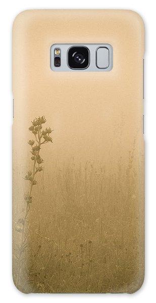 Dawning Mist Galaxy Case by Tim Good