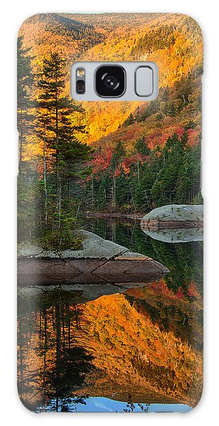 Dawns Foliage Reflection Galaxy Case by Jeff Folger