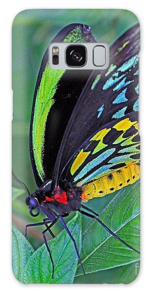 Day-glo Butterfly Galaxy Case