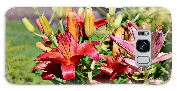 Day Lillies In The Garden Galaxy Case