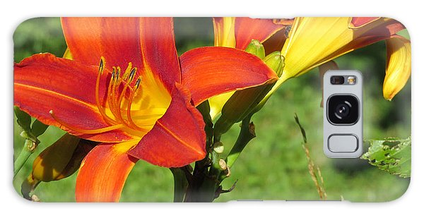 Day Lily 3 Galaxy Case