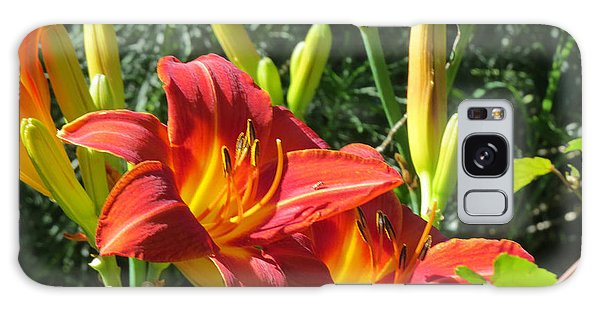 Day Lily 4 Galaxy Case