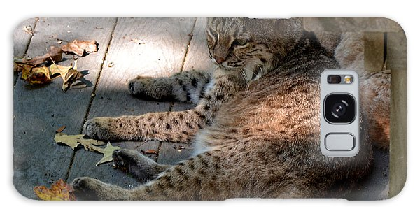 Daydreaming Bobcat Galaxy Case by Eva Thomas