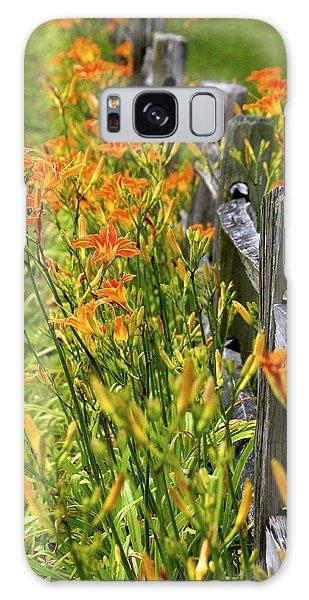 Daylilies Along Fence Galaxy Case