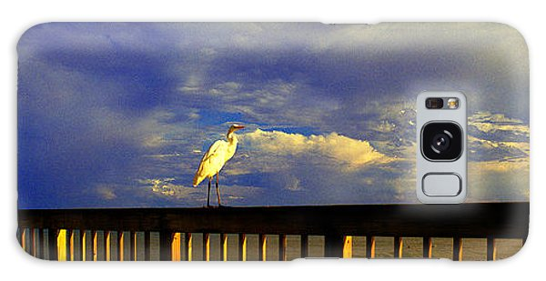 Daytona Beach Fl Bird Sun Glow Pier  Galaxy Case