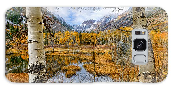 Dazzling Fall Foliage Galaxy Case