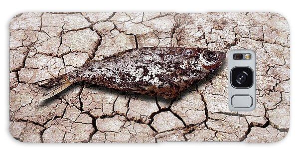 Scientific Illustration Galaxy Case - Dead Fish On Cracked Earth by Victor De Schwanberg