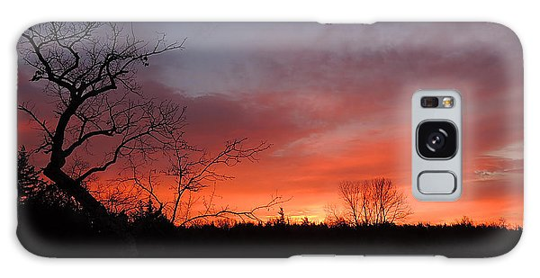 Dead Tree Sunrise Galaxy Case