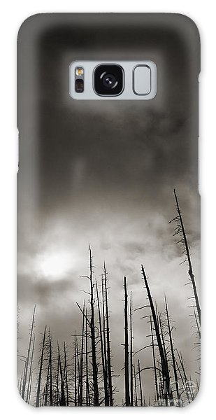 Dead Trees Galaxy Case