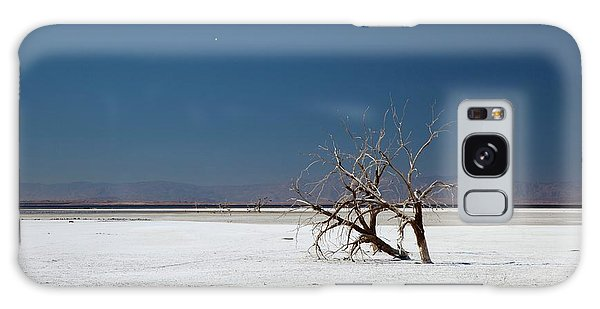 Dead Trees On Salt Flat Galaxy Case by Jim West