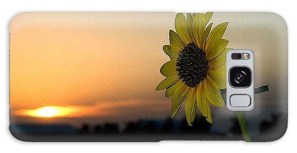 Galaxy Case featuring the photograph Sunflower And Sunset by Mae Wertz