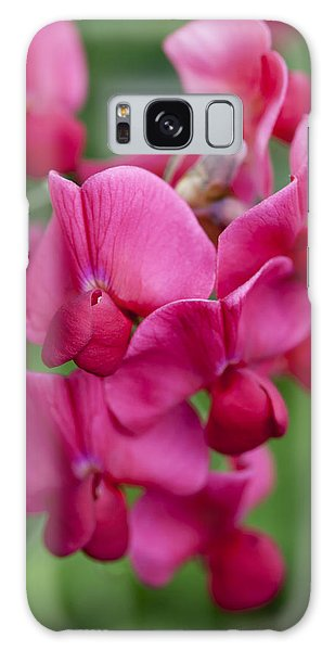 Deep Pink Sweet Pea Galaxy Case